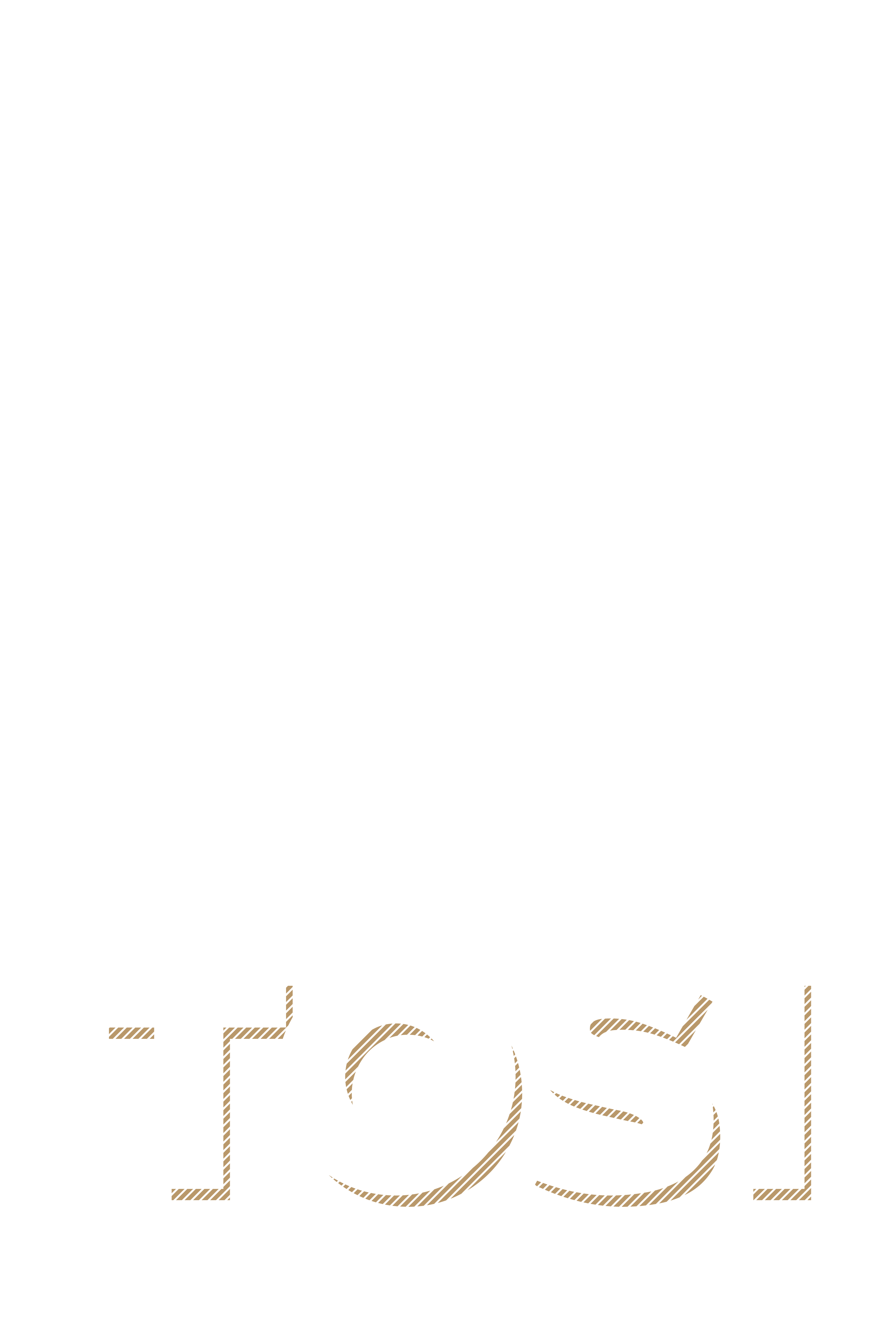 Cycles Tosi Logo